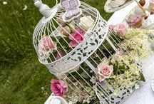 Bird Cages / Bird cages / by Ellie