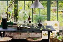 Indoor gardening / Who says gardens are for the outside .. bring them indoors as a nice feature!