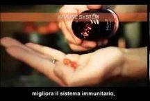 Kyani Sunset ™ / Kyani Sunset ™ è la perfetta combinazione di tocotrienoli (la forma più potente della vitamina E) e omega-3.- http://aulettabenessere.kyani.com/it-it/ - http://auettabenessere.blogspot.it/ - http://aulettaarpaiabenessere.blogspot.it/ - http://aulettabenessere.kyani.net   - Questo prodotto utilizza puro semi di annatto cespuglio per sfruttare i benefici per la salute di tocotrienoli. Kyani Sunset ™ omega-3 sono derivati dal salmone selvaggio dell'Alaska Sockeye e altri pesci