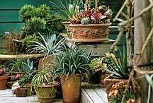 Haven / små og stor inspirereene ide'er til haven