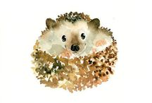 Happy Hedgehogs / The cutest, little woodland creatures EVER! / by Rita Zobayan