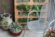 Bloemen, Planten, Balkon