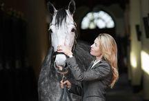 Once a horsegirl