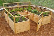 Záhrada - garden / pestovanie zeleniny a kvetov, úprava záhrady
