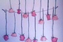 ROSA Cipria / tutto il pink che a Cipria piace