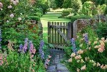 Min Hage / Inspirasjon og ideer til hage