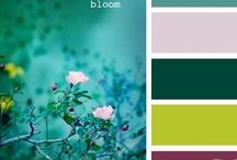 MY COLOR PALETTE / Només combinacions de colors