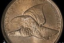 Flying Eagle Cent / Flying Eagle Cents / by Executive Coin