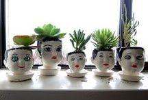 Chez moi: where plants go