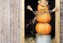 Autumn / by Jeanna King