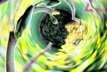 Twist-Art / Twist-Art Photography