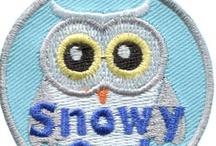 Owls / https://www.e-patchesandcrests.com/catalogue/sets/owls.php