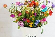 Flower / #flower