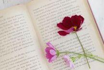 Femininity in Flowers / Feminine Flowers