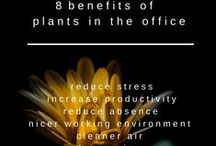 HR Infographics / HR & Working Life Infographics