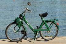 Raymond / Féru d'aventure et de gastronomie, Raymond s'immisce dans les ruelles de la côte d'Azur pour vous faire découvrir ses trésors gourmands. Né en 1974, Raymond se déplace rapidement. De couleur verte, il nous rappelle la série spéciale Rolland Garros.
