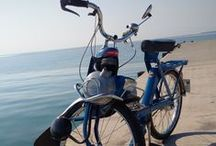 Lili / Complètement amoureuse des glaces à déguster sur la plage ou en terrasse, Lili est LE radar des meilleurs glaciers de la Côte d'Azur.  Lili est un solex 3800 Luxe de couleur bleu…pour lui rappeler la plage.