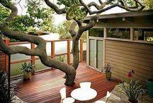 Design I Garden, Backyard & Swimming Pool Ideas for Home