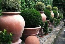 Il était une fois..un beau jardin / Jardiner, c'est de la thérapie / by Ronelle Van Wyk
