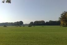 Hometown Twente
