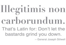 Latin Language/ Latim / by Ines Dias