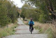 Riding the Otago Central Rail Trail