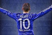 Hazard:333