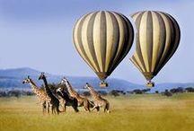Aventures et sports Afrique du Sud / Tout ce que l'Afrique du Sud offre en activités : sports, aventures, treck