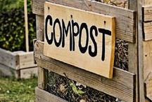 Composting / Transforming simple yard waste and kitchen scraps into rich, nourishing compost is one of the most rewarding gardening hobbies there is. Find an entire rainbow of composting methods here: from aerobic composting and compost teas, to worm farming, humanure, and more.