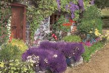 Cottage Gardens / From the stereotypical English garden to the whimsical, these cottage gardens provide some great inspiration and project advice.