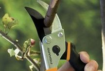 Pruning Tips / Pruning seems like a simple, straight-forward task - and yet, the art of doing it correctly is very different and specialized to each specific plant. Read up before you start cutting! And find all the guides you'd need before you start pruning here.