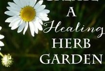 Herbalism & The Medicinal Garden / Grow your very own healing garden, by learning how to plant and tend healthy foods and medicinal herbs. Includes articles on these plants and simple, safe DIY remedies for home. Turn your garden into your medicine cabinet! Start your very own natural self-care today.