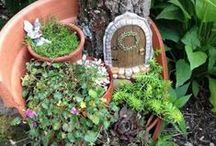 Fairy Gardens / Create your own magical fairy land in the back garden, complete with miniature houses and furniture. Who knows who might decide to move in...