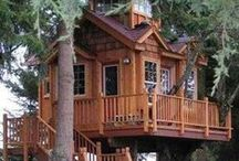 Tree Houses / Learn to build your own DIY tree house at home, and get some inspiration from this collection of amazing tree houses from around the web.