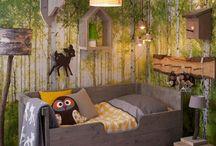Room designs/decor