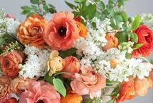 Arrangements and Bouquets