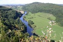 Forest of Dean & Wye Valley / The beautiful area that is the Forest of Dean & Wye Valley - embrace the freedom!