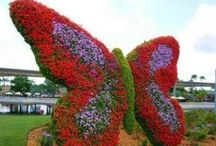 GARDEN ART ( TOPIARIES ) / MAN MADE ARTS FOR THE GARDEN.  / by nellie lacanaria viloria