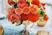 Orange Bright Beauty / by Vintage Wedding Love