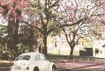 Cars i love<3