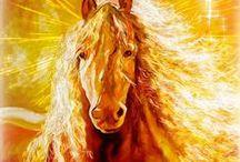 Beautiful horses ♞♘♥♕♛❀✿✵❤♡
