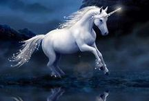 Unicorn ♞♘❥♕♡✿❀❣✬♥