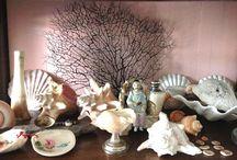 collections / by Anita Van Delft