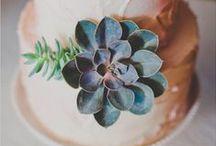 Pozsgás növények az esküvőn / Succulent Wedding
