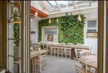 Restaurant, Bar, Pub & Nature / Vertical gardens and vegetable pictures inside or outside restaurants.