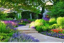 Front yard landscape / Landscape design for woodland garden, wildlife plants (woodland birds, hummingbirds, and butterflies), shade gardens, slopes/hillside, privacy/screens, and English style cut gardens. Ultimate Curb appeal.  / by Janelle Luzano Hilario