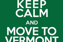 Vermont / Vermont makes me smile. I am happy when I'm living there and, when I'm not there, I'm happy just thinking about the next time I'll be there. From the people who live there to it's history and its' scenery, Vermont is a unique and special place. It's stolen my heart. Will it steal yours?