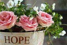 Buketter och blomsterarrangemang / Bouquets and floral / Med blommor kan man skapa kreationer i all oändlighet... det är bara fantasin som sätter gränser!