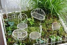 Mini-trädgårdar /  Mini Gardens / Skapa din egen drömträdgård i miniatyrformat! Rolig hobby! Låt fantasin flöda!
