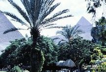 Egypt<3<3 / love this country  / by Rose:)